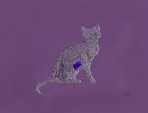 IF purple cat-1
